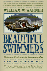 Beautiful Swimmers cover