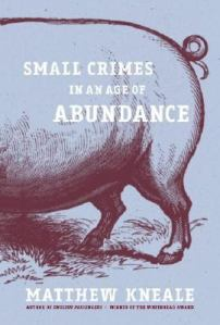 Cover of Small Crimes in an Age of Abundance