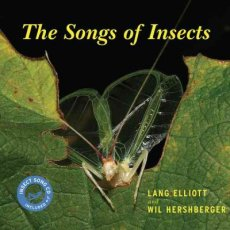 SongsofInsects