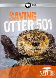 saving otter