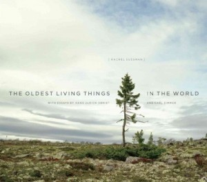 TheOldestLivingThings